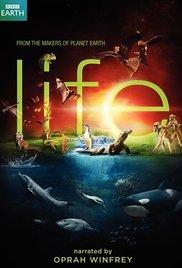 BBC | Life | Hayat | Belgesel İzle | 720p |  10 Bölüm |