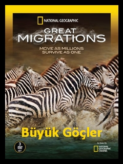 Büyük Göçler   Great Migrations   1080p Full HD Belgesel İzle   Türkçe Dublaj   Tüm Bölümler  