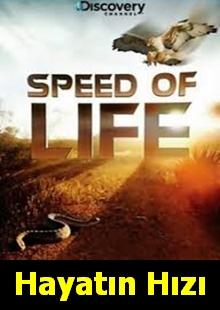 Speed of Life  | Hayatın Hızı |
