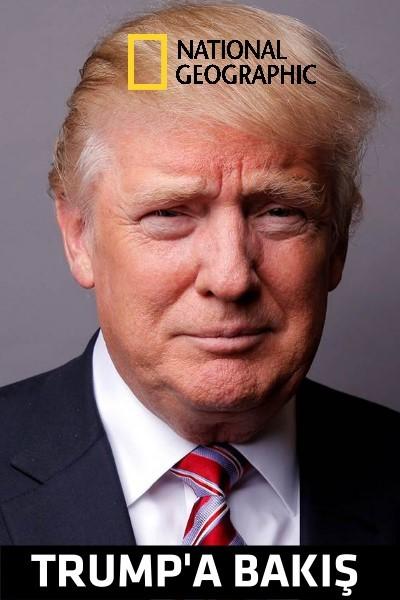 Trump'a Bakış