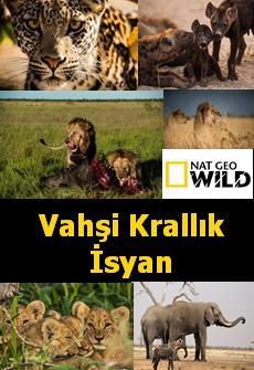 Vahşi Krallık İsyan | Nat Geo Wild | Belgeselce |