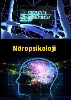Nöropsikoloji