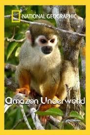 Amazonun Bilinmeyenleri | Amazon Underworld
