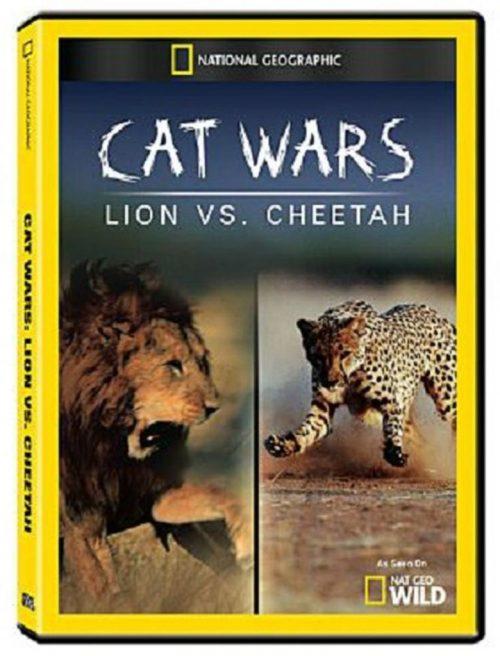 Kedi Savaşları Aslan Çitaya Karşı
